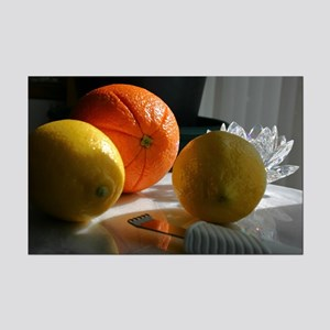 Citrus Fruit Mini Poster Print