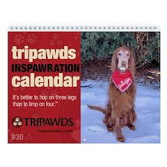 Tripawds Wall Calendar #30 - New For 2020
