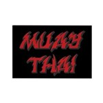 Muay Thai Magnets (10 pack)