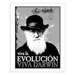 Viva Darwin Evolucion Small Poster