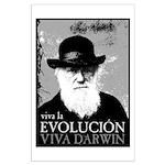 Viva Darwin Evolucion Large Poster