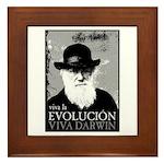 Viva Darwin Evolucion Framed Tile