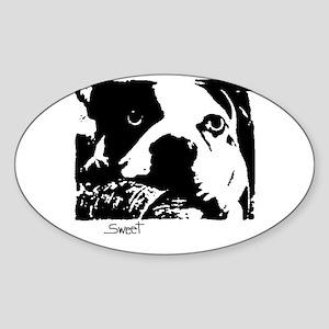 SWEET BOSTON TERRIER Oval Sticker
