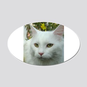 maine coon fourth white Wall Decal