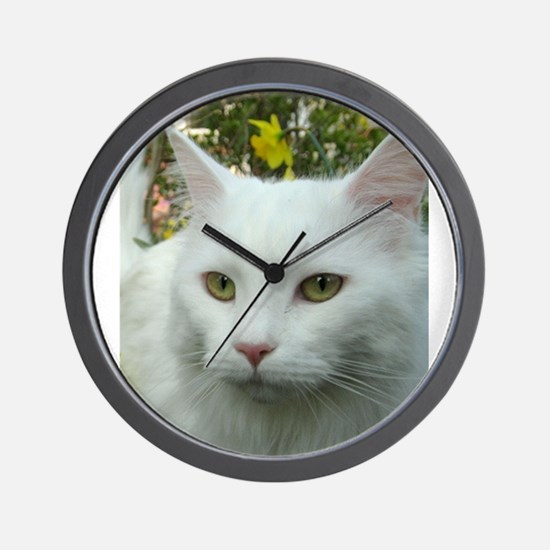 maine coon fourth white Wall Clock