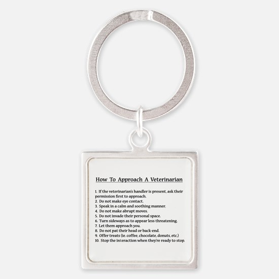 Approaching A Veterinarian Keychains