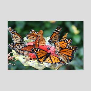 Mini Poster Print-Butterflies