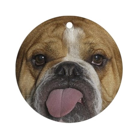 plllbbbbbbb! Ornament (Round)