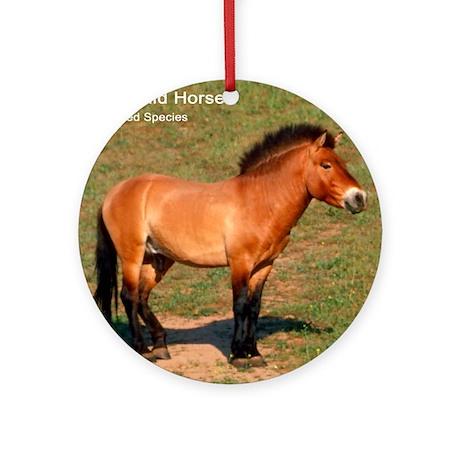 Mongolian Wild Horse Photo Ornament (Round)