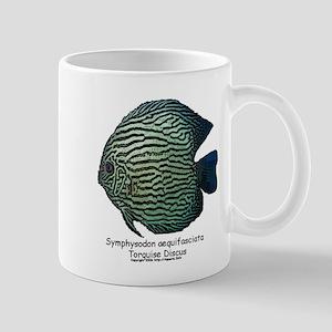 Symphysodon aequifasciata (Di Mug