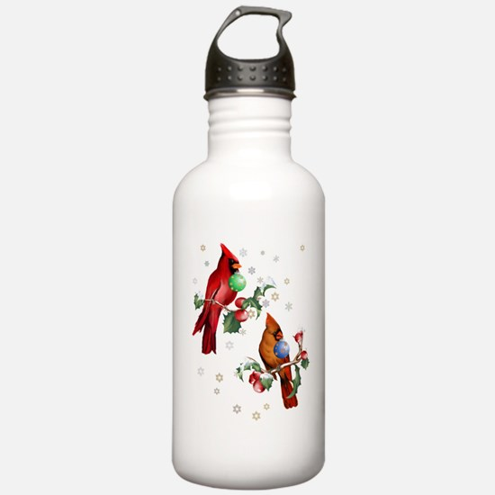 Two Christmas Birds Water Bottle