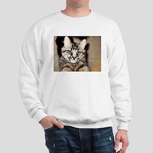 Custom Comic Stylized  Sweatshirt