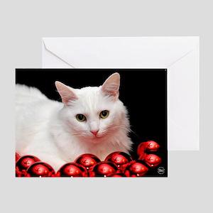 Xmas Cat Greeting Card