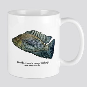 Haplochromis compressiceps Al Mug