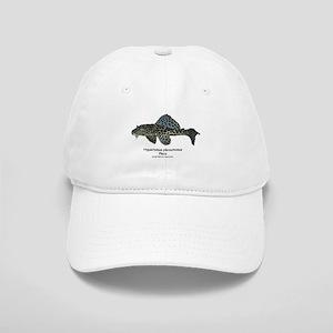 Hypostomus plecostomus Cap