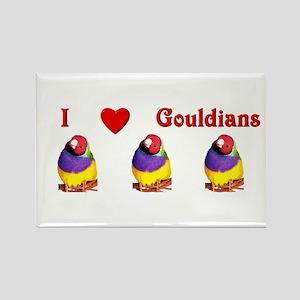 Gouldian Finch Rectangle Magnet