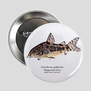 Corydoras paleatus (Cory Cat) Button