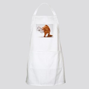 Thanksgiving Funny Turkey Apron