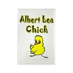 Albert Lea Chick Shop Rectangle Magnet (10 pack)