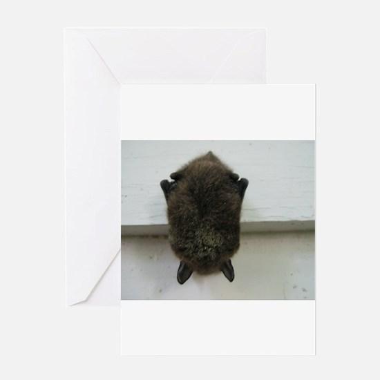 Funny Bat Greeting Card