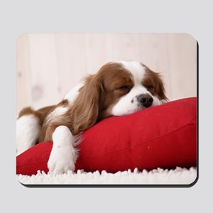 SLEEPING SPANIEL PUPPY Mousepad