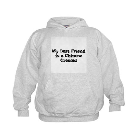 My Best Friend is a Chinese C Kids Hoodie