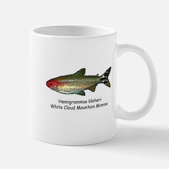 Hemigrammus bleheri Mug