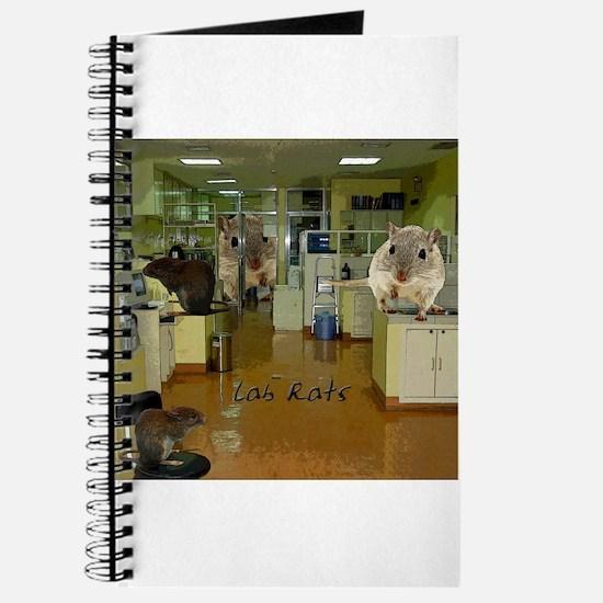 Lab Rats 2 Journal