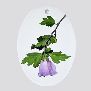 Rose of Sharon Ornament (Oval)