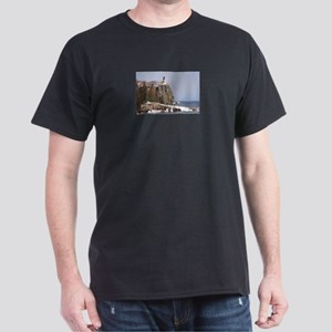 Split Rock Lighthouse Dark T-Shirt