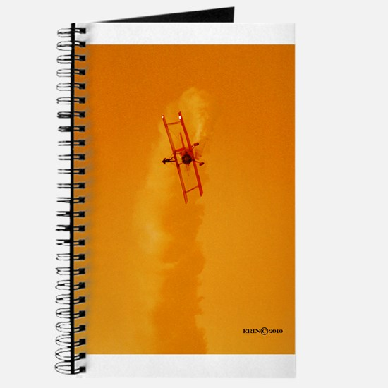 Wing Walker 1 Journal