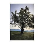 Tree Poster Print