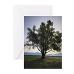 Tree Greeting Cards