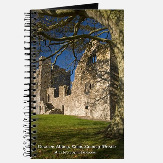 Bective Abbey, Trim, County Meath