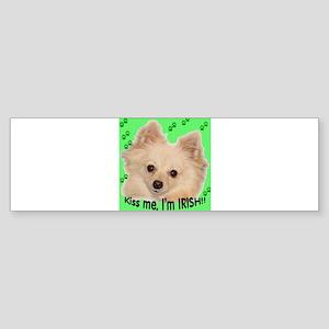 St_Patrick Bumper Sticker