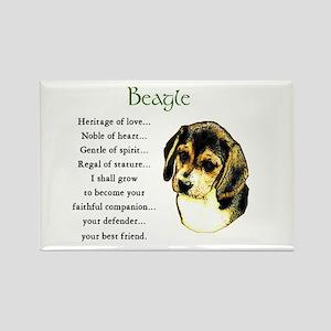 Beagle Rectangle Magnet (10 pack)