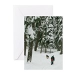 Snow Trail Greeting Cards (Pk of 10)