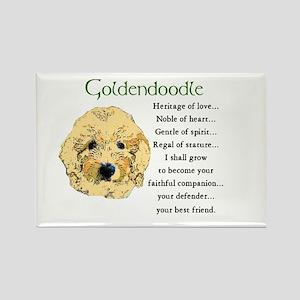 Goldendoodle Rectangle Magnet (10 pack)