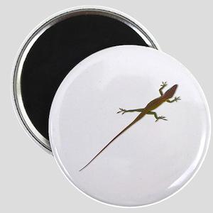 "Crawling Lizard 2.25"" Magnet (10 pack)"