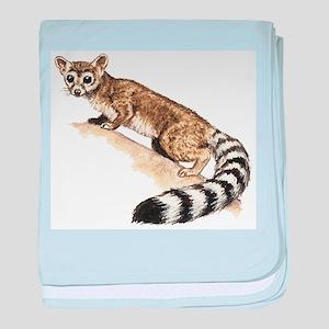 Ringtail Cat baby blanket