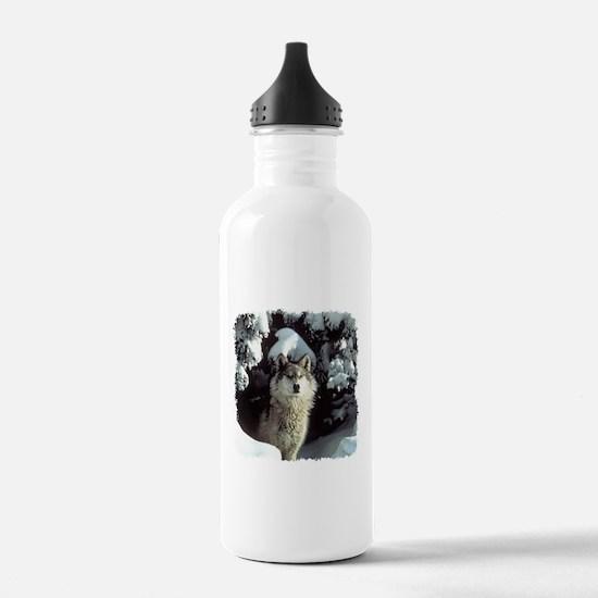 Winter Wolf Water Bottle