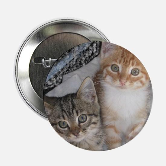 """Just Kittens 2.25"""" Button"""