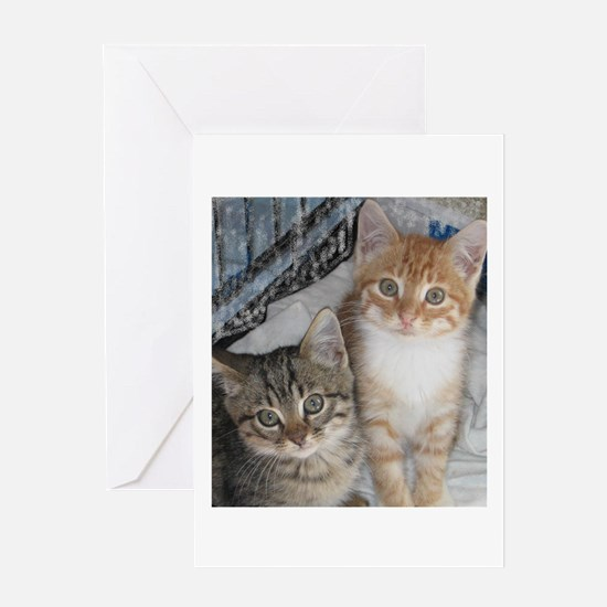 Just Kittens Greeting Card