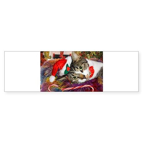 Candy Cane Cat Sticker (Bumper)