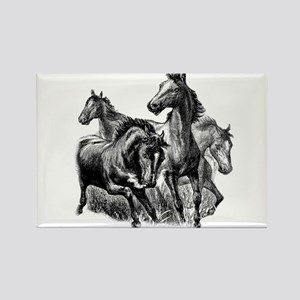 Wild Horses Illustration Rectangle Magnet