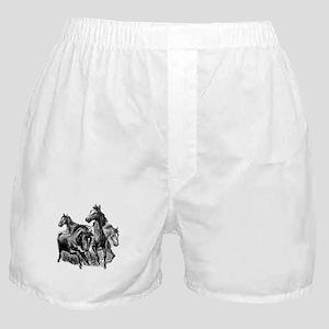 Wild Horses Illustration Boxer Shorts
