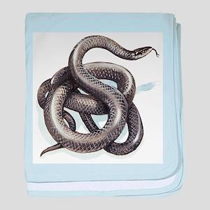 Northern Black Racer Snake baby blanket