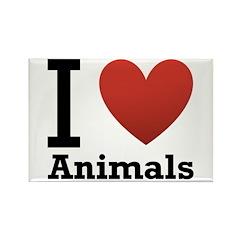 I Love Animals Rectangle Magnet (100 pack)
