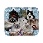 8 kitties blanket Sherpa Fleece Throw Blanket