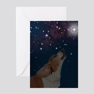 RD Basset O Howly Night Greeting Card